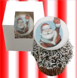 Individual Santa Lamington Cupcake