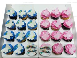 Mini Cupcakes with Butterflies and Happy Birthday Edible Plague - Choose your colours