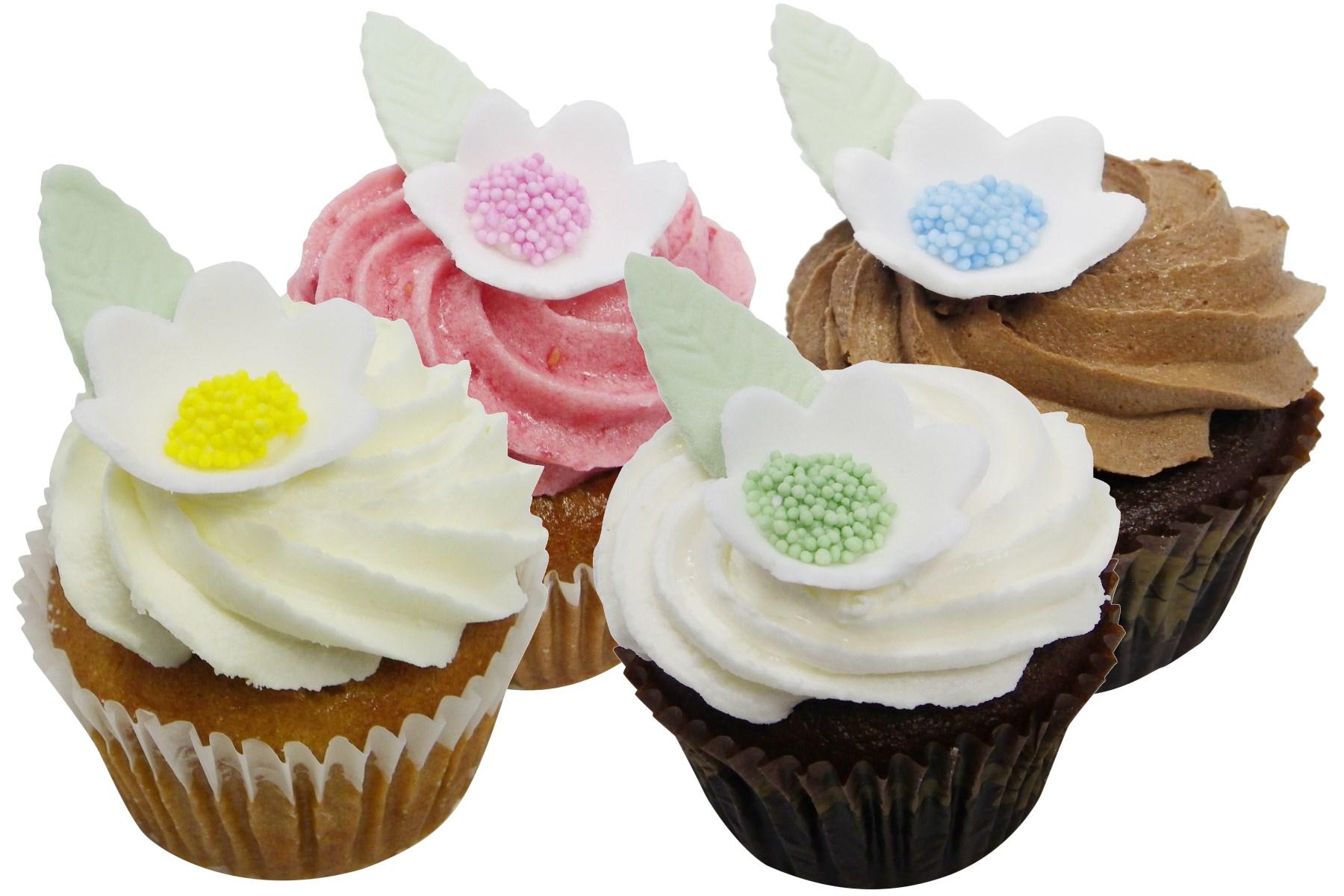 Vegan Gluten Friendly Cupcakes