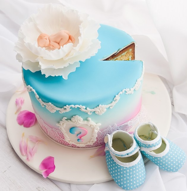 Baby and Gender Reveal