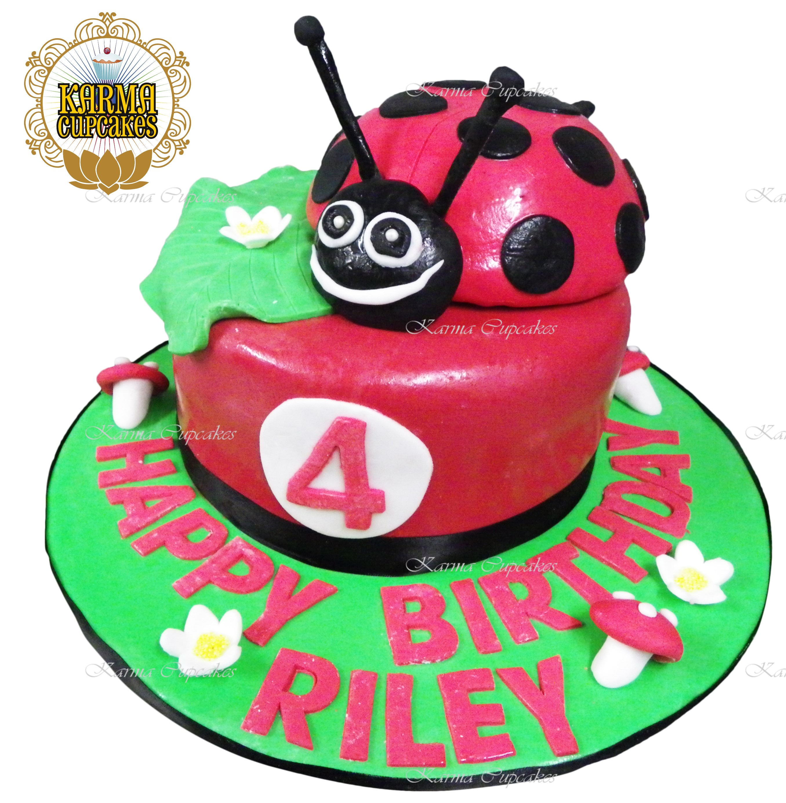 Ladybug 3D Birthday Cake