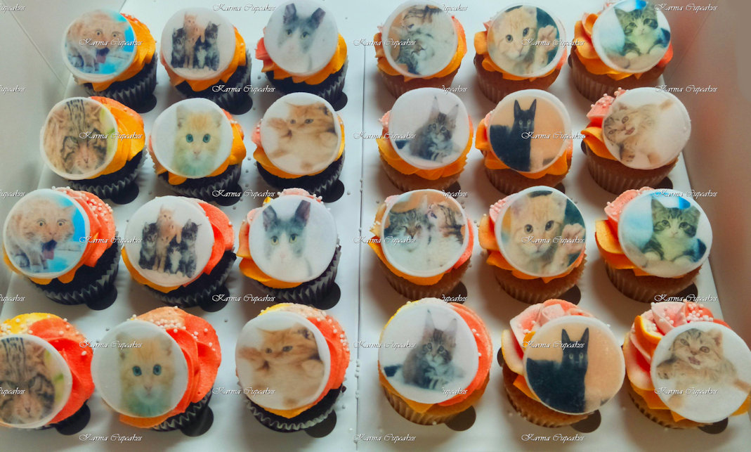 Cats Edible Images Cupcakes